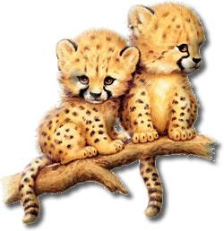 Image clipart animaux gratuit en ligne - Image animaux gratuite ...