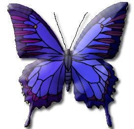 Image clipart animaux gratuit en ligne - Image papillon gratuit ...