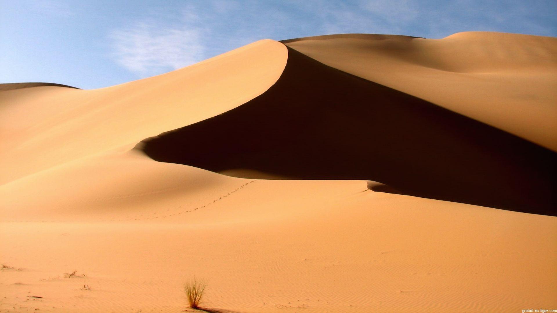 Sahara paysage vacances arts guides voyages for Agence format paysage